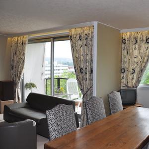 Haguenier, rénovation et décoration d'un double séjour-salon
