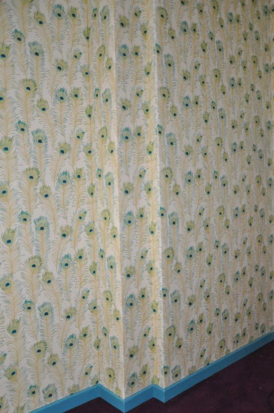 Printed pattern backdrops for child photography