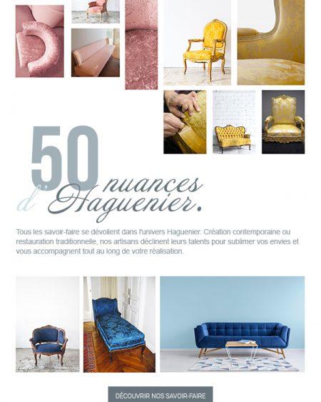 05-2017-haguenier-newsletter-tapisserie