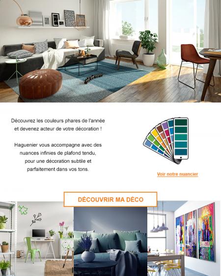 NL_haguenier_03-2017-couleurs2